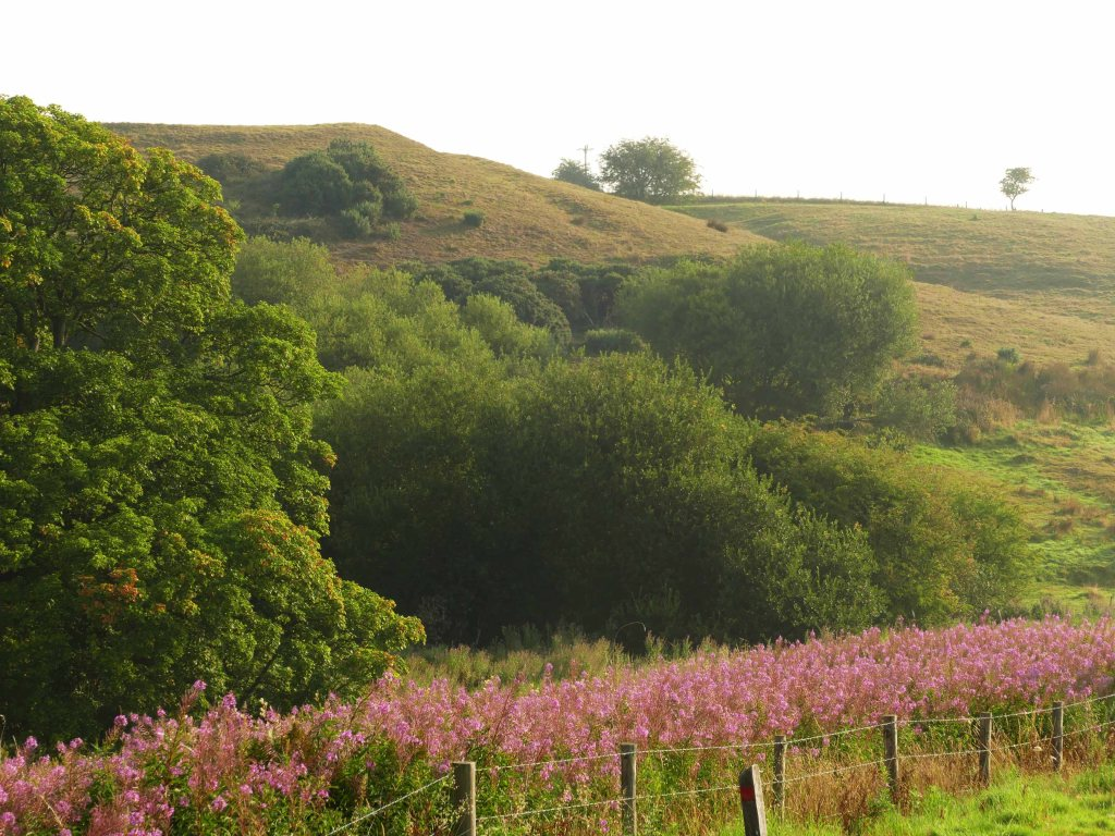 Snipe Dales Nature Reserve.